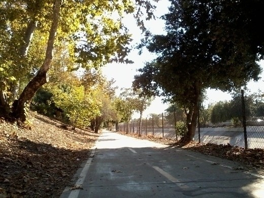 The Arroyo Seco river bike path to Los Angeles from Pasadena.  Quite scenic in some spots, such as this one.  And, as you can see, not too crowded for an ideal city run or bike ride.